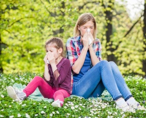 alergija cvetni prah